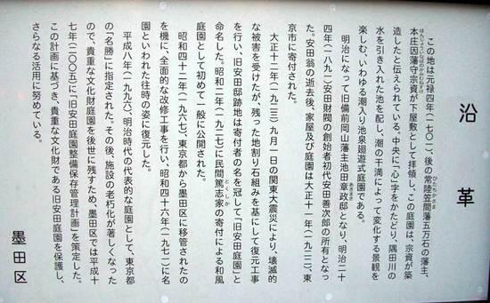 101208yasuda900_1.jpg